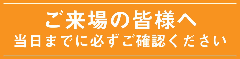 茅ヶ崎 芸術 花火 2019